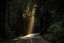 all roads lead somewhere PAROUSIA Magazine